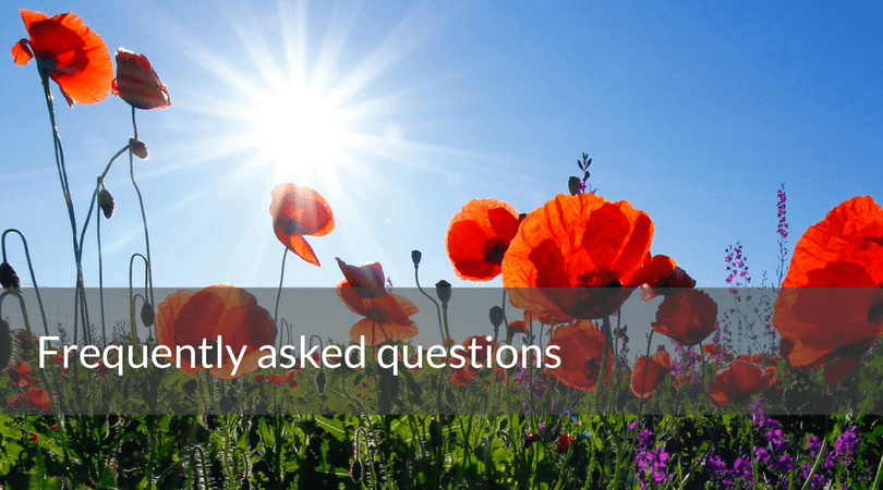 Frequently asked questions. orange flowers fan hero image